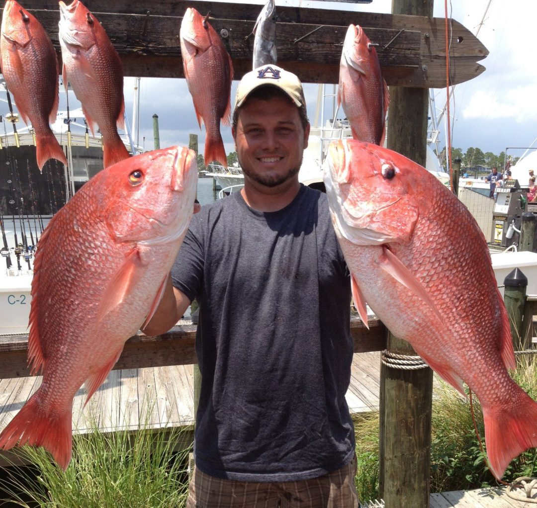 Offs Fishing Charter In Orange Beach Red Sner
